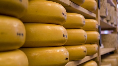 ​The United States Officially Has Way Too Much Cheese Right Now
