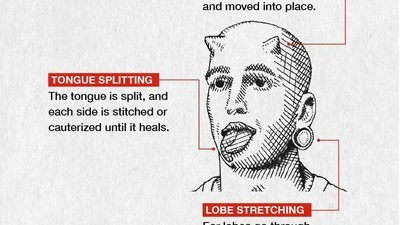 A Breakdown of Extreme Body Modification