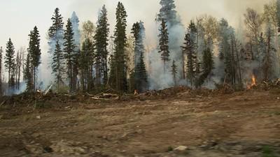 În culisele incendiilor devastatoare din Canada