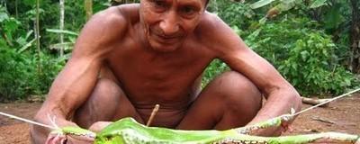 Le poison d'une grenouille d'Amazonie soigne l'alcoolisme et la dépression