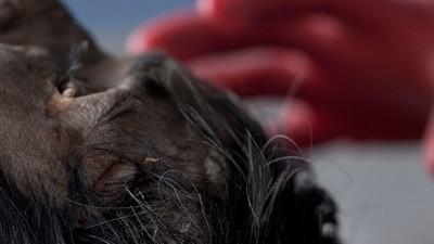 ¿Dónde está la muerte? Sesiones desde un anfiteatro de la Ciudad de México