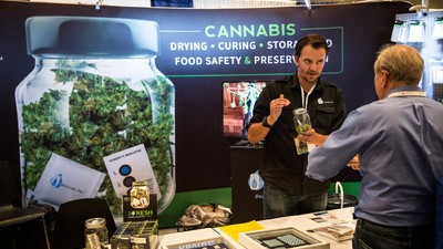 'Suits' and 'Stoners' Are Fighting for the Soul of the Weed Industry