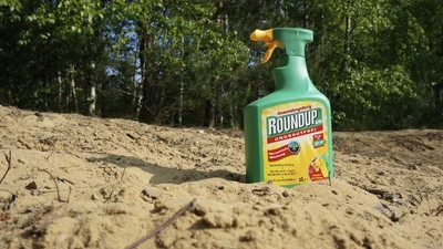 Monsanto, Krebs und deutsches Bier: Worum geht es bei der Glyphosat-Debatte?