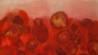 Expired Medicine Creates Abstract Animal Paintings