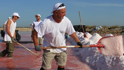 Collecting the World's Finest Salt in the 'Dead Water' of France