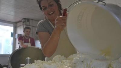 Avec les derniers producteurs de Salers, la Rolls des fromages du Cantal