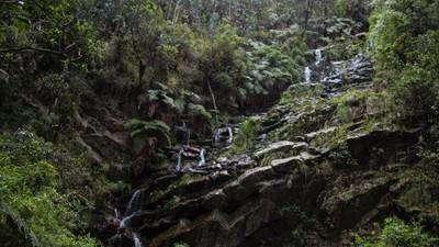 El futuro de los cerros orientales de Bogotá ya se decidió