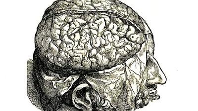 Perché la scienza ha sempre cercato l'anima nel cervello?