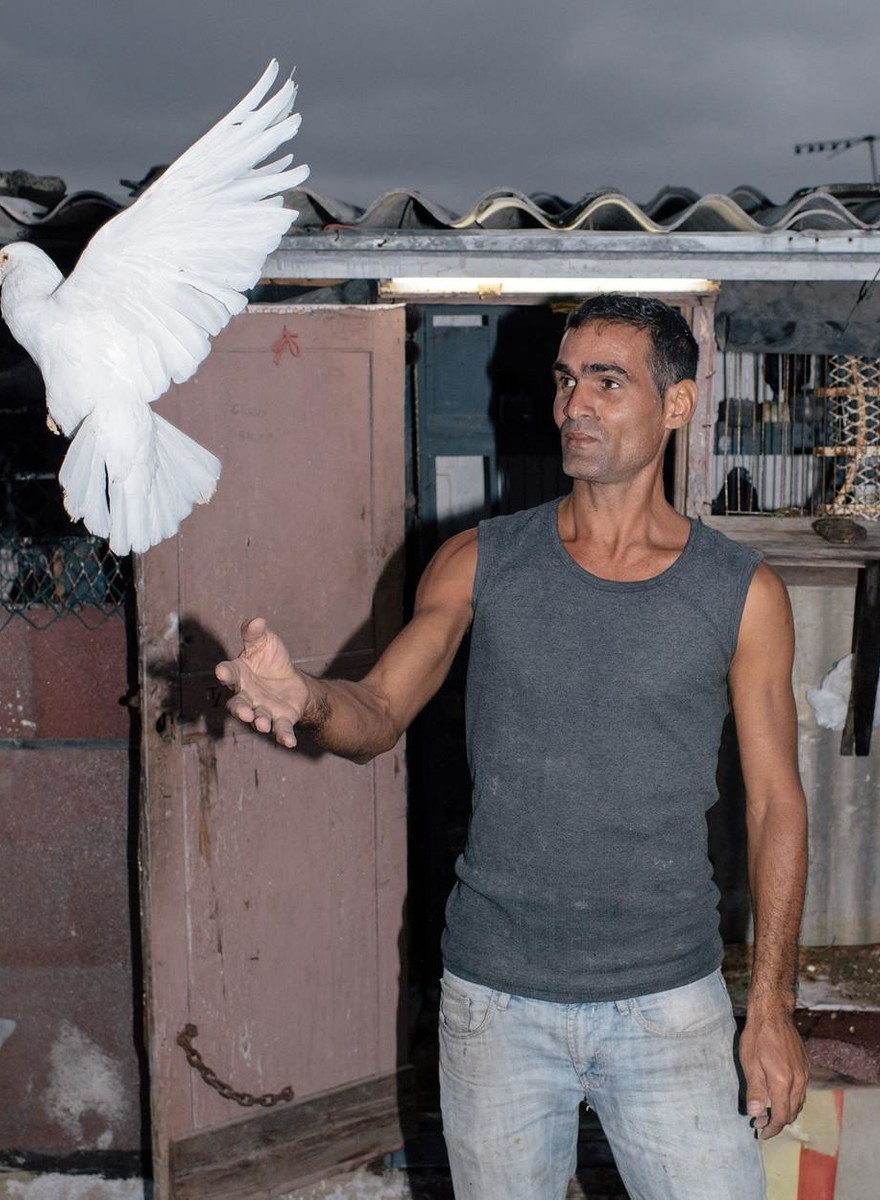 Foto's van een Cubaanse duivenmelker en zijn geliefde vogels