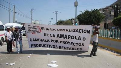 Miles de campesinos mexicanos recolectan firmas para la legalización de la amapola