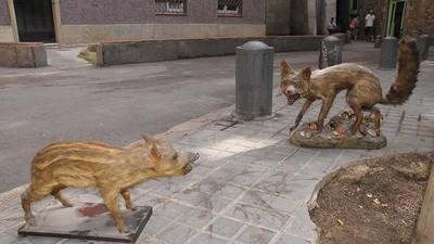 Fotografii cu cele mai distruse cartiere ale Spaniei