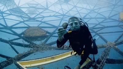 Rybí farmaření v hlubokém moři