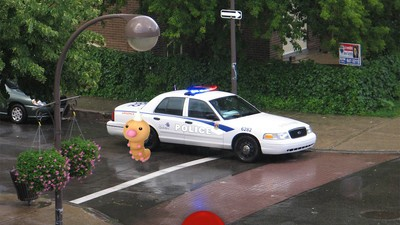 A Driver Playing 'Pokémon Go' Crashed into a Cop Car in Canada