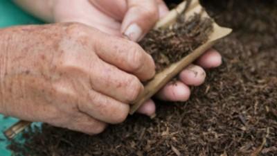 De ce oamenii din Amazon beau tutun