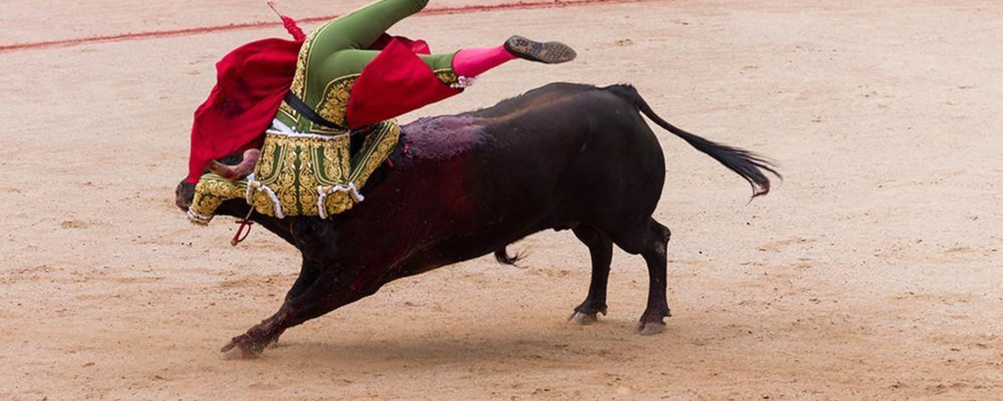 Tragic Photos of the Carnage at Spain's Bullfighting Festival
