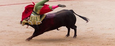 Fotos trágicas da carnificina num dos mais conhecidos eventos tauromáquicos de Espanha