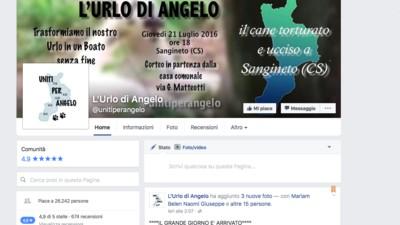 Perché un sacco di persone stanno manifestando per un cane ucciso in Calabria