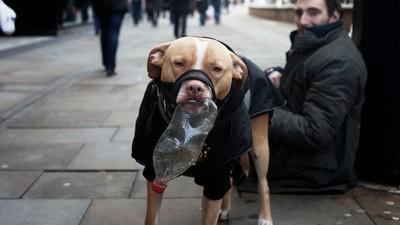 Jak se chovat k bezdomovcům podle bezdomovců