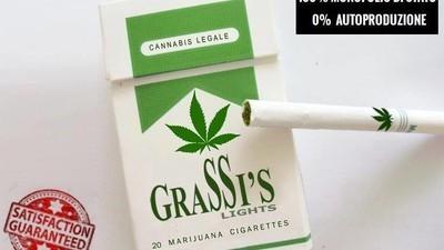 Cosa c'è che non va nella proposta di legge sulla legalizzazione della cannabis