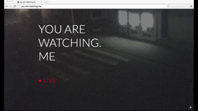 El acceso libre a cámaras web convierte nuestra vida en 'El show de Truman'