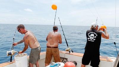 Hengelen naar haaien bij het Monster Shark Tournament