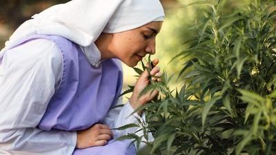 La mota es religión: Un día con las monjas pachecas de California