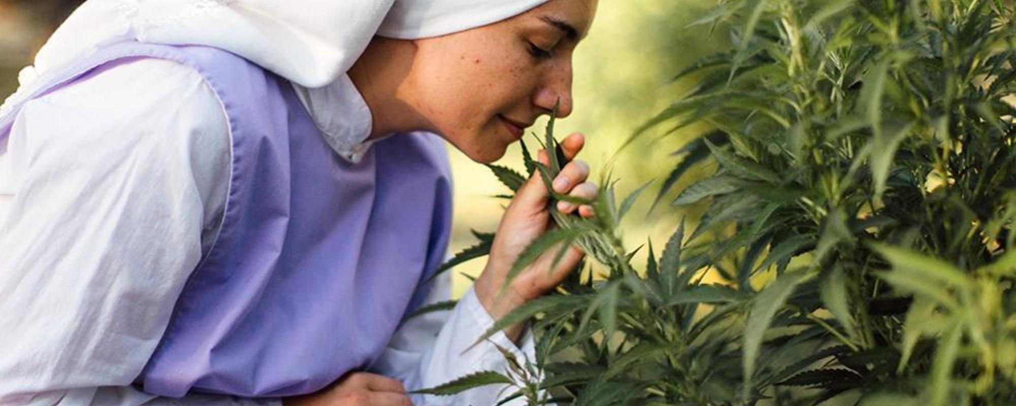 Der Himmel auf Erden – Zu Besuch bei den Marihuana-Nonnen