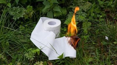 Ein Deutscher zündet nach seinem Geschäft sein Klopapier an und verursacht einen Waldbrand