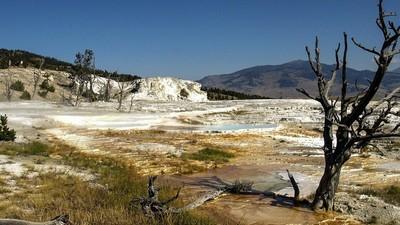 Er is een plek in Yellowstone National Park waar je ongestraft een moord kan plegen