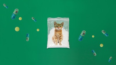 ​Drug Dealers Explain Their Marketing Strategies