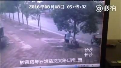 Video: Ein Dieb sägt einen Baum ab, um ein Fahrrad zu klauen