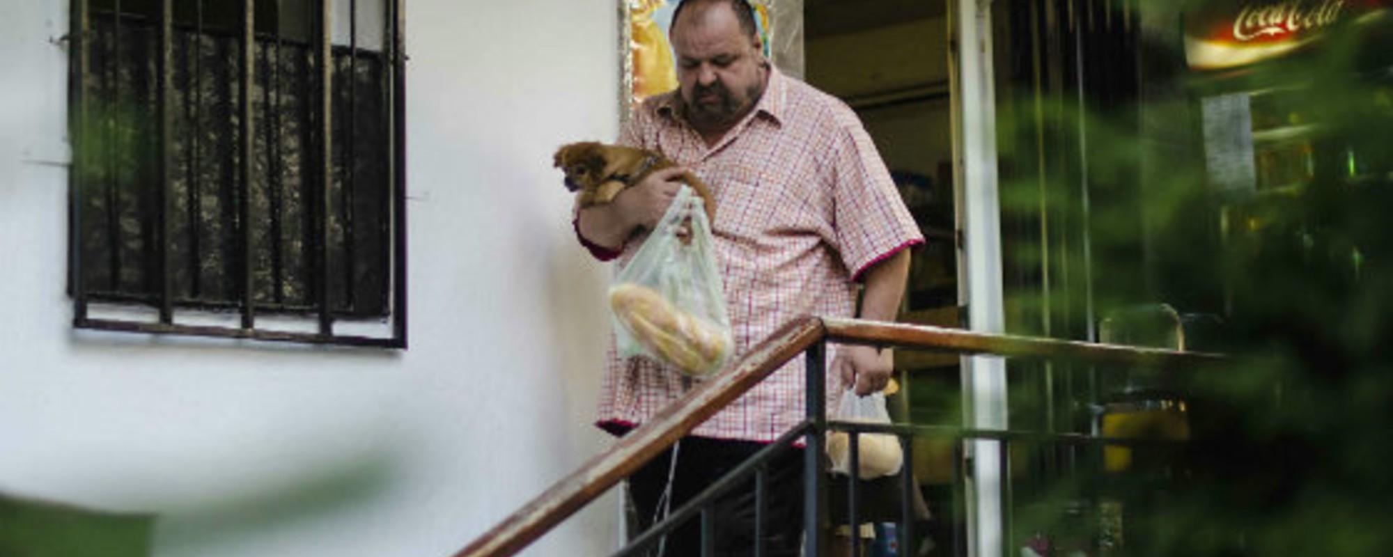 Fotografii cu bucureșteni care își plimbă câinii prin oraș