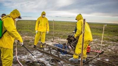 Antrace, scorie nucleari, renne infette: cosa sta emergendo dai ghiacci dell'Artico