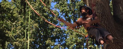 I Went to a Tree Climbing School to Overcome My Fear of Failure