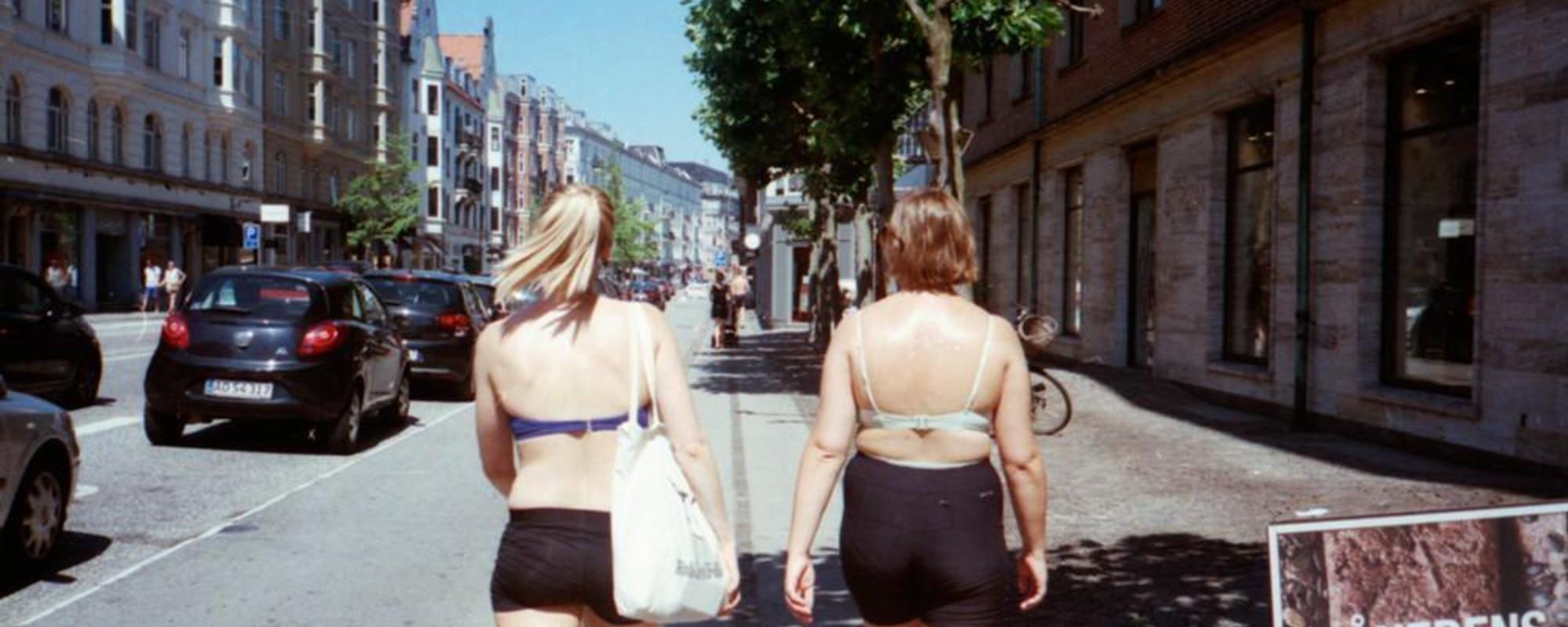 Fotografii cu danezi transpirați în ultimele zile de vară
