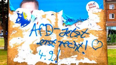 AfD wird bei Ungebildeten, Arbeitslosen, Rechten und Ossis immer beliebter