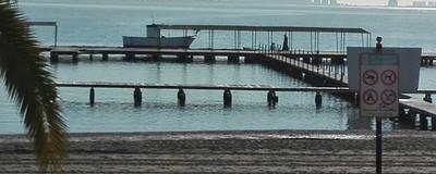 El Mar Menor se va a la mierda y los políticos tienen la culpa