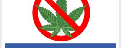 Die FPÖ spricht sich gegen die Legalisierung von Cannabis aus und macht ihre Wähler wütend