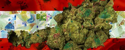 Laut dem Hanf-Institut kostet jede Cannabis-Anzeige 15.000 Euro