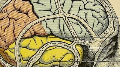 Des psychiatres français reviennent sur les cas les plus difficiles qu'ils ont rencontrés