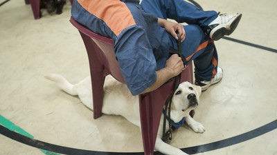 How Having a Dog Changed My Life in Prison