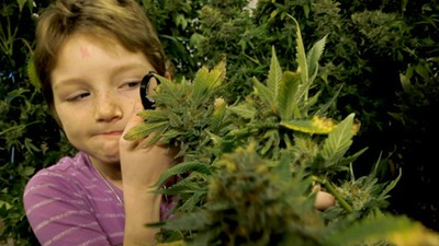 Could the UK Finally See Medical Marijuana Legalized?