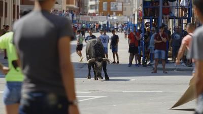 Toros en las calles de España: anismalistas vs taurinos