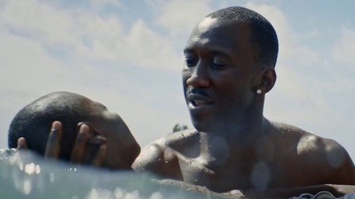 We Review Our Favourite Movies from TIFF