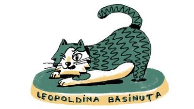 Leopoldina Bășinuță și cutiile
