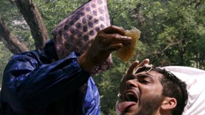 Op zoek naar hallucinogene honing in Nepal