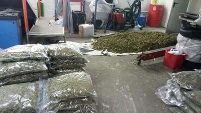 Polizei findet in Hannover eine halbe Tonne Marihuana in einer Autowerkstatt