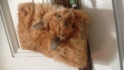 ​People Are Pissed That a Taxidermist Made a Dead Cat into a Handbag and Sold It
