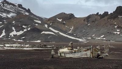 Estas fotos incríveis documentam as alterações climáticas na Antártida