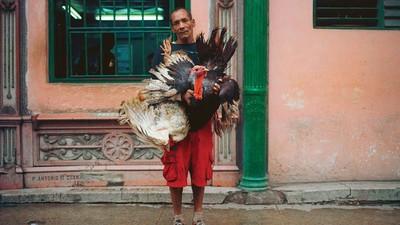 Fotos eines schwindenden Kubas